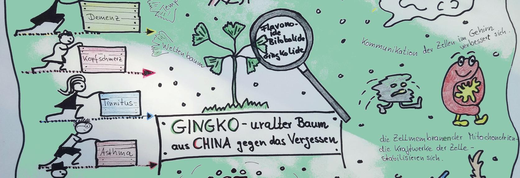 Apotheke am Herrfurthplatz Ginkgo