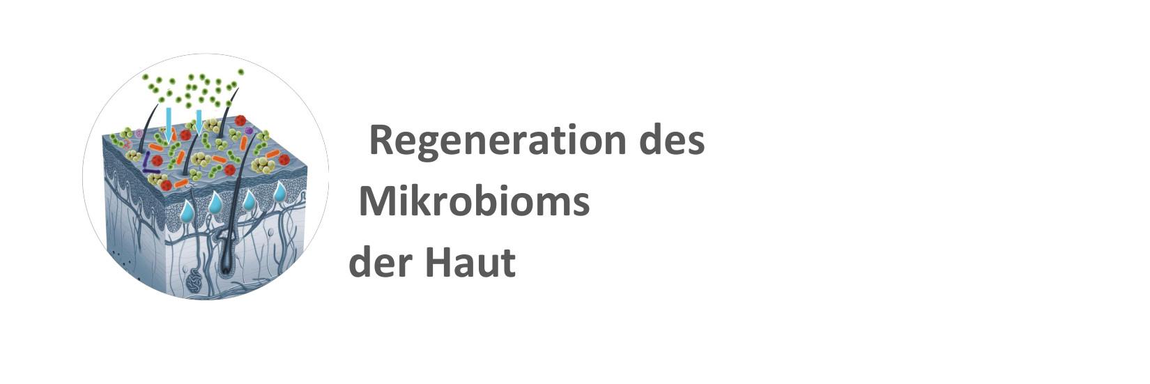 Microbiom der Haut_Apotheke am Herrfurthplatz